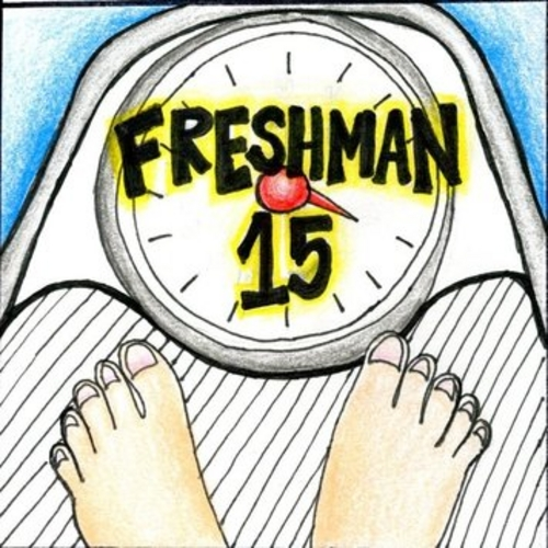 freshmen 15 When a first year college student (usually a female) eats a ton, and precedes to sit on her ass and gain 15 lbs.