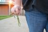 Timely Warning: Sexual assault on campus still underinvestigation